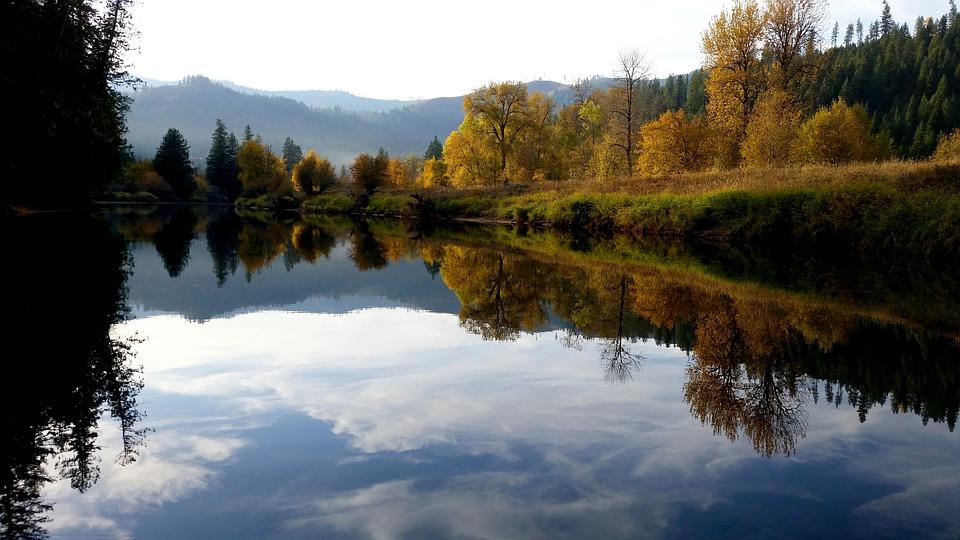 Idaho Recovery, The Recover
