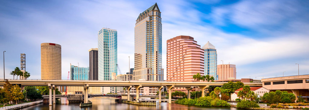 Tampa's Addiction Issues, The Recover