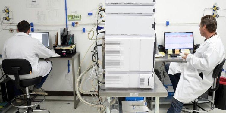 Sacramento Marijuana Lab Falsified Test Reports Leads to Shut Down