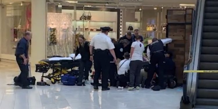 Child thrown from mall of america