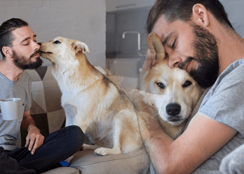 Pet in Addiction Recovery
