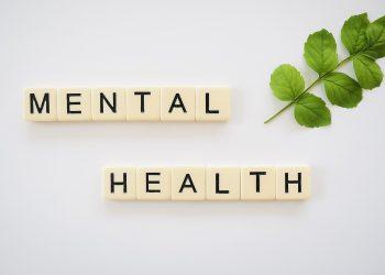 Mental Health Telehealth